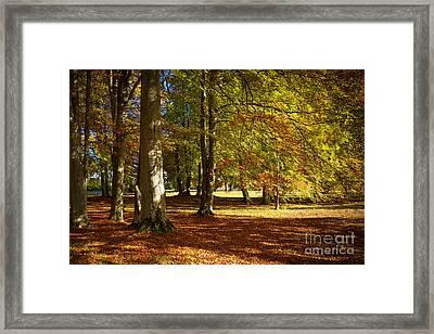 Autumn Park Framed Print