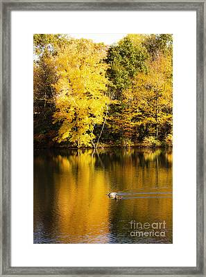 Autumn Pond Framed Print by Leslie Leda