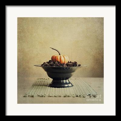 Harvest Pumpkins Framed Prints
