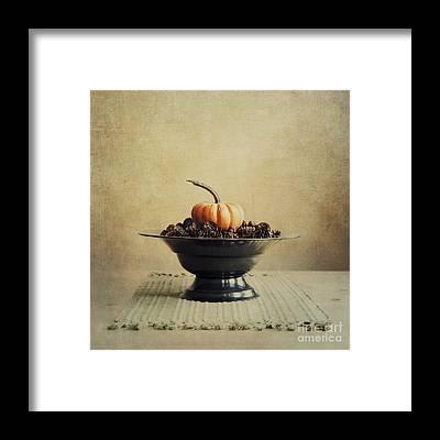 Pumpkin Framed Prints