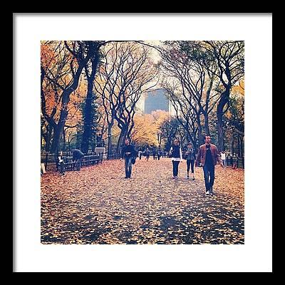 Vik Framed Prints