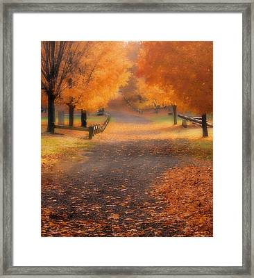 Framed Print featuring the photograph Autumn by Raymond Earley