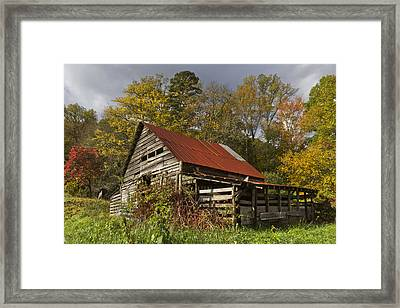 Autumn Red Framed Print by Debra and Dave Vanderlaan