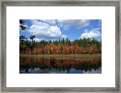 Autumn Reflection Framed Print by David Rucker