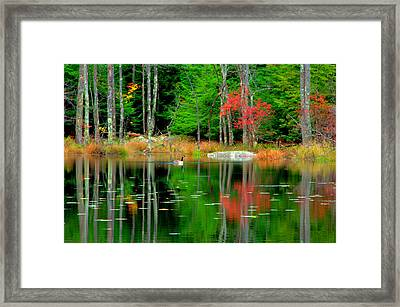 Autumn Reflections Framed Print by Aron Chervin