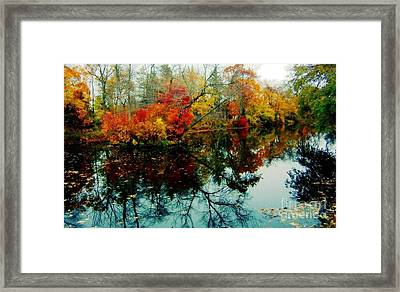 Framed Print featuring the photograph Autumn Reflections by Holly Martinson