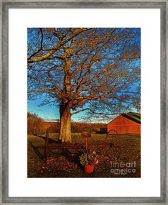 Autumn Rest Framed Print by Diane E Berry