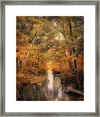 Autumn Riches 2 Framed Print by Jai Johnson