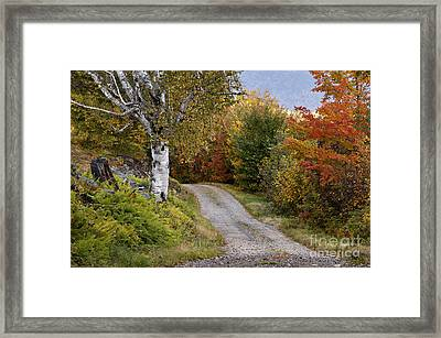 Autumn Road - D005840 Framed Print