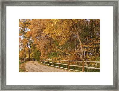 Autumn  Road To The Ranch Framed Print by James BO  Insogna