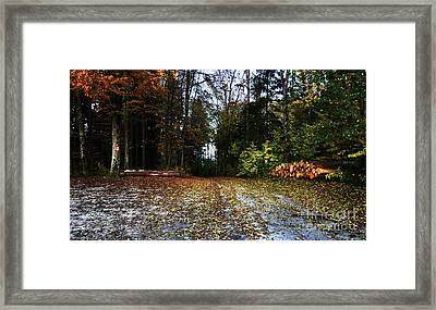 Framed Print featuring the photograph Autumn Scene by Bruno Santoro