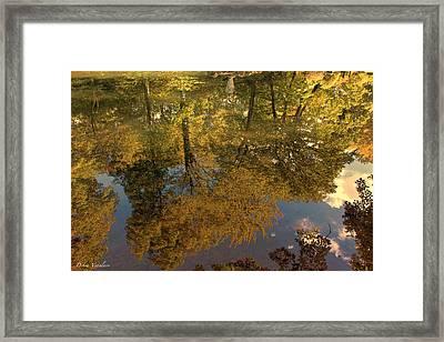 Autumn Sky Reflection Framed Print by Debra     Vatalaro