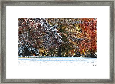 Autumn Snowstorm Framed Print by Kimberly Little