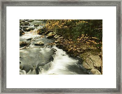 Autumn Spill Framed Print
