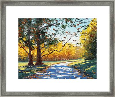 Autumn Splendor Framed Print by Graham Gercken