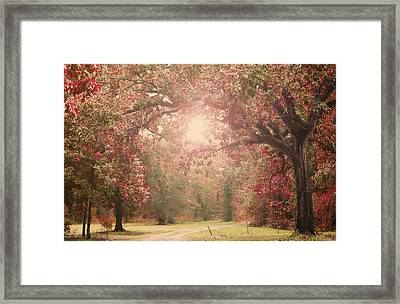 Autumn Splendor Framed Print by Susan Bordelon