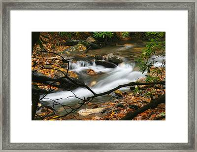 Framed Print featuring the photograph Autumn Spring by Joan Bertucci
