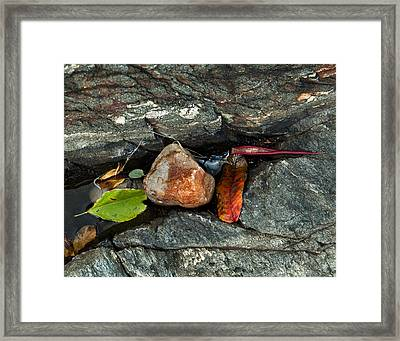 Autumn Still Life Framed Print by Ron St Jean