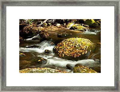 Autumn Stream Framed Print by Lena Auxier