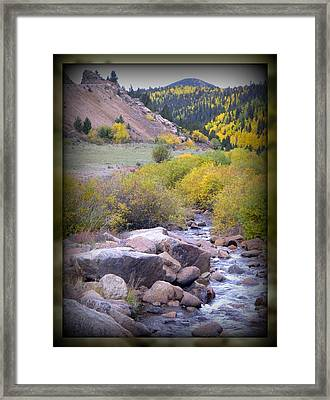 Autumn Stream Framed Print by Michelle Frizzell-Thompson