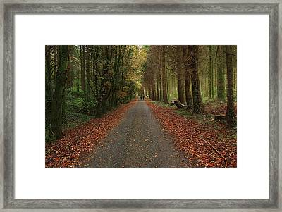 Autumn Stroll. Framed Print