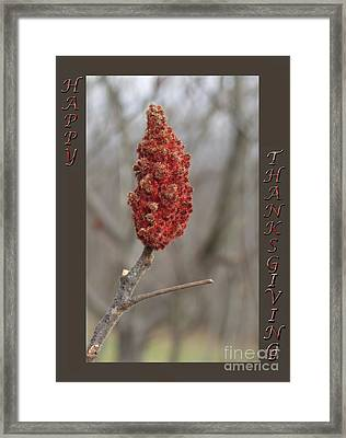 Autumn Sumac  Thanksgiving Greeting Card #2 Framed Print