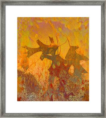 Autumn Sun Framed Print