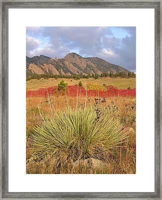 Autumn Sunrise Along The Mesa Trail Framed Print