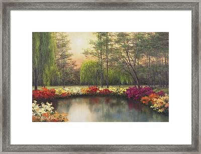 Autumn Sunset Framed Print by Diane Romanello