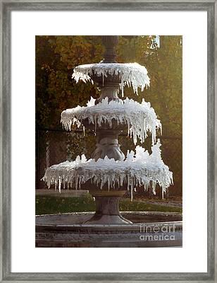 Autumn Surprise Framed Print