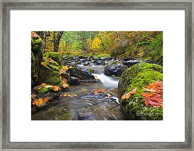 Autumn Swirls Framed Print by Mike  Dawson