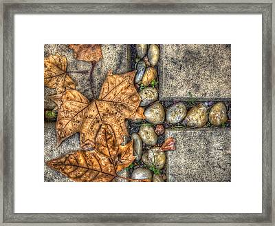 Autumn Texture Framed Print by Wayne Sherriff