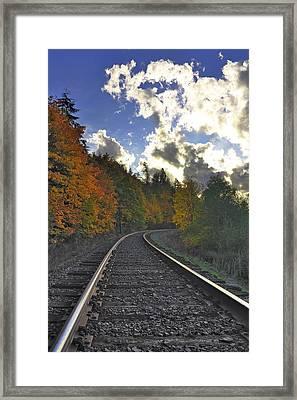 Autumn Tracks Framed Print