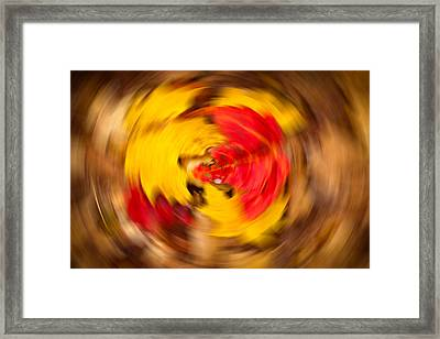 Autumn Trance Framed Print by Matt Dobson