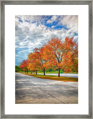 Autumn Trees At Busch Framed Print by Bill Tiepelman