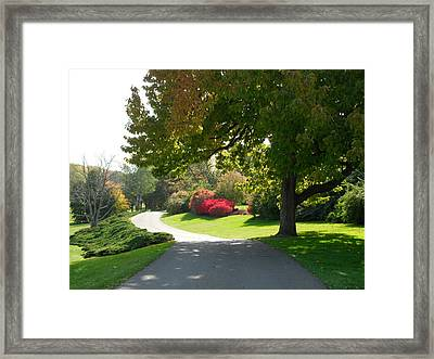 Autumn Framed Print by Val Oconnor