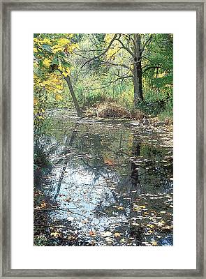 Autumn Vale Framed Print