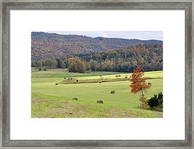 Autumn Valley Hay Bales Framed Print