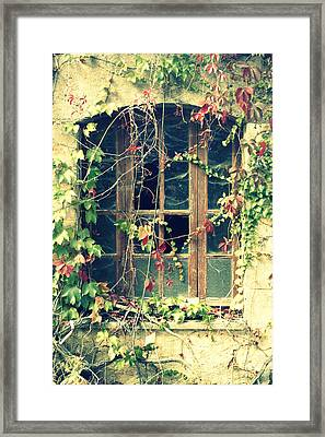 Autumn Vines Across A Window Framed Print by Georgia Fowler