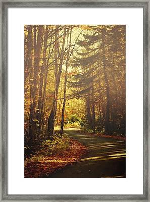 Autumn Walk Framed Print by Gary Smith
