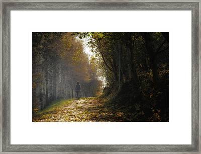 Autumn Way Framed Print by Jaroslaw Oleksyk
