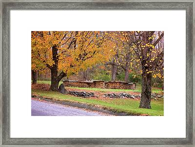 Framed Print featuring the photograph Autumn Woodpile by Tom Singleton