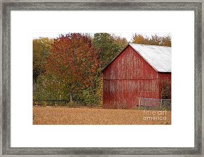 Autumnal Barn Framed Print by Ginger Harris