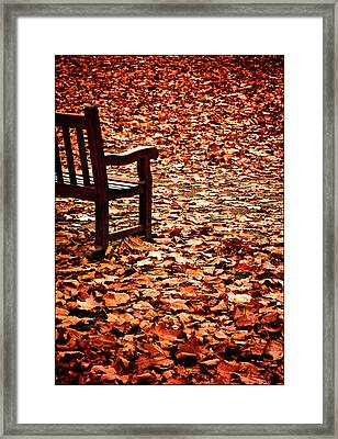 Autumnal Colours Framed Print