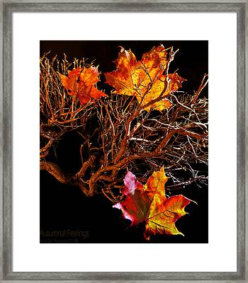 Autumnal Feelings Framed Print