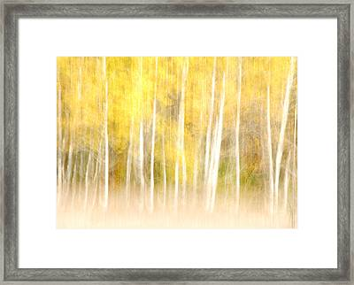 Autumns Abstract Framed Print by Optical Playground By MP Ray