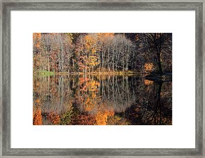 Autumns Art Framed Print by Karol Livote