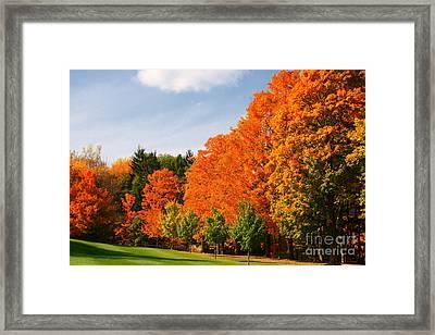 Autumn's Artwork Framed Print