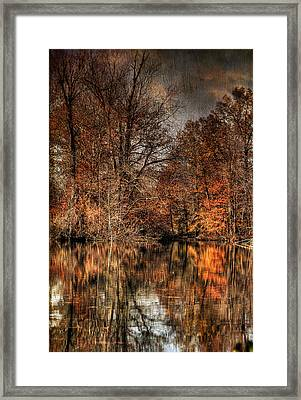 Autumn's End Framed Print by Paul Ward