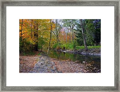Autumn's Splendor Framed Print by Kay Novy